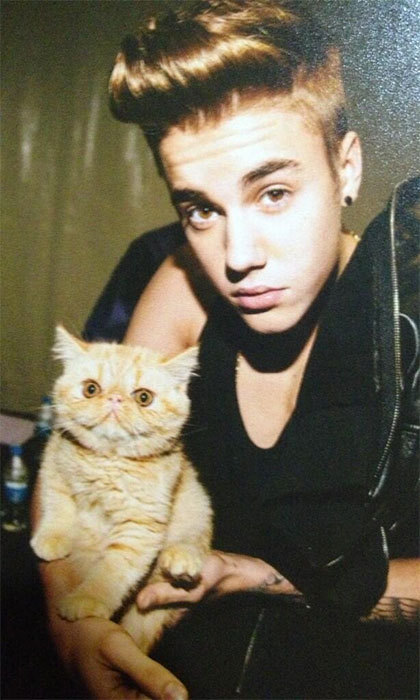 Justin Bieber has had a lot of pets (Johnson the snake, Malley the Monkey), but his Persian kitty cat, Toots, seems to hold a special place in the pop idol's heart.