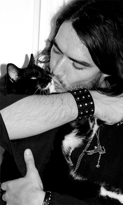 "When now-exes Russell Brand and Katy Perry were together, the couple were forced to bring in a pet therapist so that their cats would get along. Russell's cat, Morrissey, even took ""cat Valium"" to relieve the stress!"