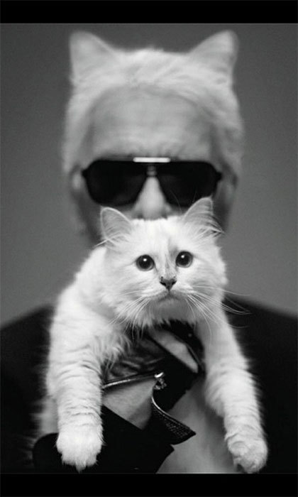 "Karl Lagerfeld's cat Choupette is arguably the most famous of the bunch, boasting 40,000 Twitter followers, a fashion spread in V magazine and her own capsule makeup collection with Shu Uemara due out this fall. Karl is so smitten with his little Siamese that he once told CNN he'd like to marry her: ""There is no marriage, yet, for human beings and animals… I never thought that I would fall in love like this with a cat."""