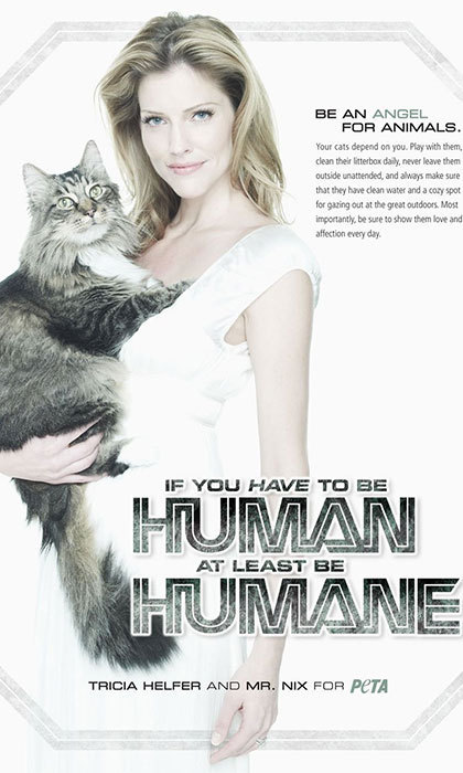 Canadian actress Tricia Helfer has SIX cats – Frankie, Bella, Delilah, Lily, Bug and Mr. Nix. Mr. Nix even joined Tricia in a PETA ad last year encouraging owners to take care of their animals.