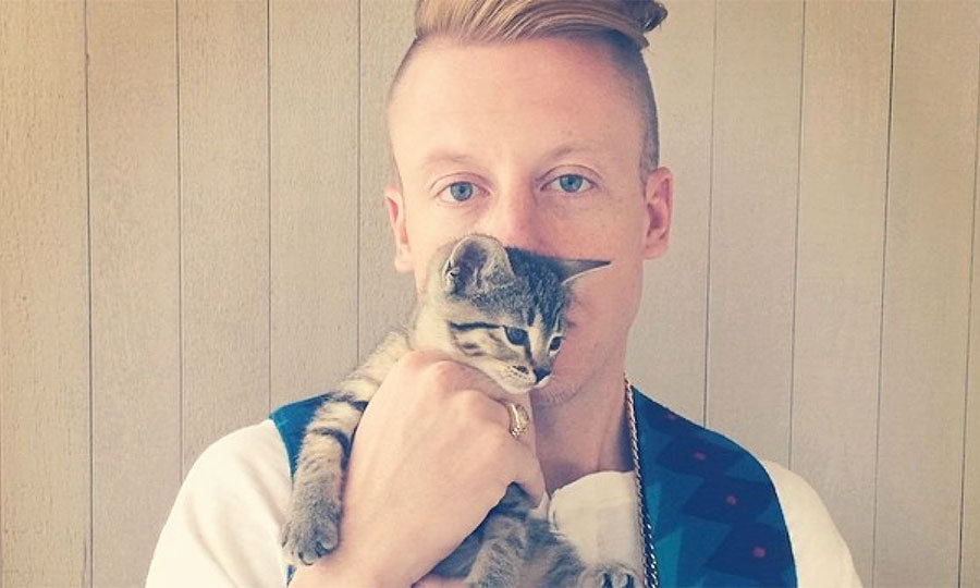 Mackelmore's kitten Cairo has her own Instagram page (and 91,000 followers!).