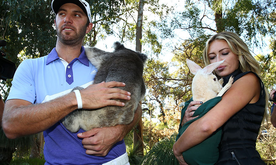 During a trip to Australia, the couple bonded with the local wildlife – Paulina hugged a baby kangaroo, while Dustin snuggle with a koala bear.